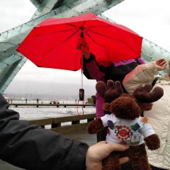 The UTE Moose said it was too wet for him in Vancouver so he is heading to Surrey.